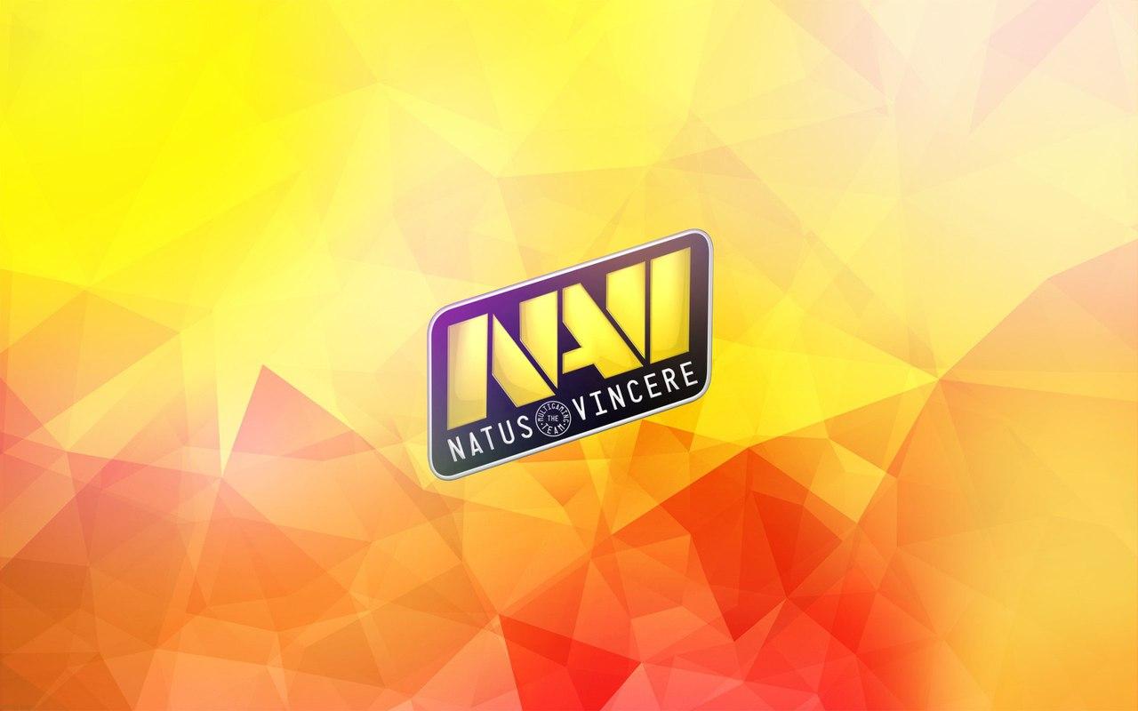 Карьерный путь NAVI в Дота 2